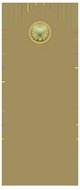 Soldato semplice Icon