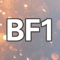 Logo del gruppo di BATTLEFIELD 1